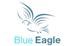 Blue Eagle Business Solutions