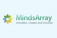 MINDSARRAY TECHNOLOGIES PRIVATE LIM